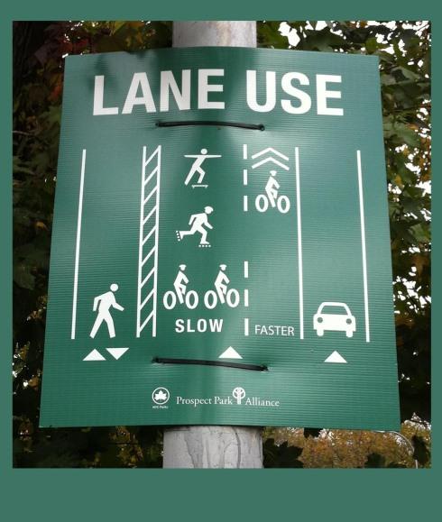 Prospect Park Drive transit signs